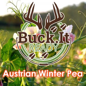 Buck.It Ready Austrian Winter Pea