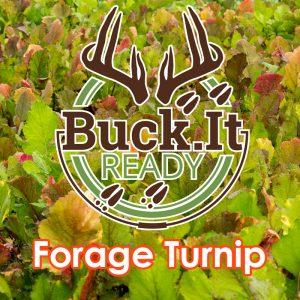 Buck.It Ready Forage Turnip