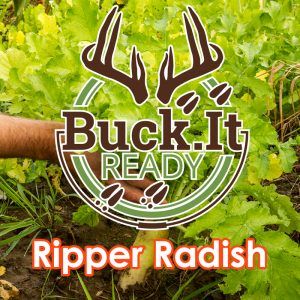 Buck.It Ready Ripper Radish